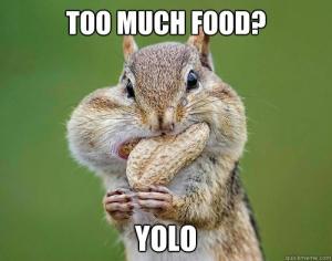 一生の間に、どれぐらい食べるんだろう?〜数値化するとよくわかる!