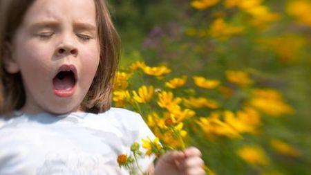 sneeze_season.jpg